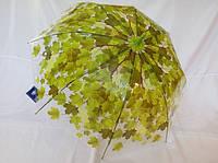 """Женский зонт трость """"листья под дождём"""""""