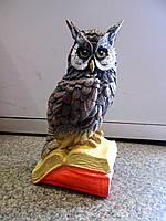 Копилка Сова на книгах. Подарки для школьников и студентов.
