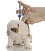 Первичная вакцинация щенков