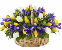 Корзинка подарочная с тюльпанами и ирисами