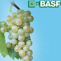 Би-58 Новый КЭ (1л) - инсекто-акарацид на зерновые, плодовые, зернобобовые, овощные и др.