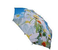 Зонт ZEST  23785-809 автомат облегченный с большим куполом