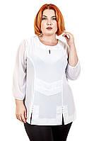 Блуза большого размера Офис 082, трикотажная блузка большого размера, дропшиппинг по украине
