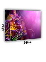 Картина на холсте 30х40см Цветок