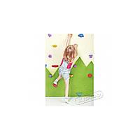 Детский скалодром «Лесочек»