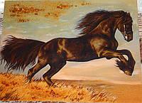 Картина из янтаря Жеребец №2