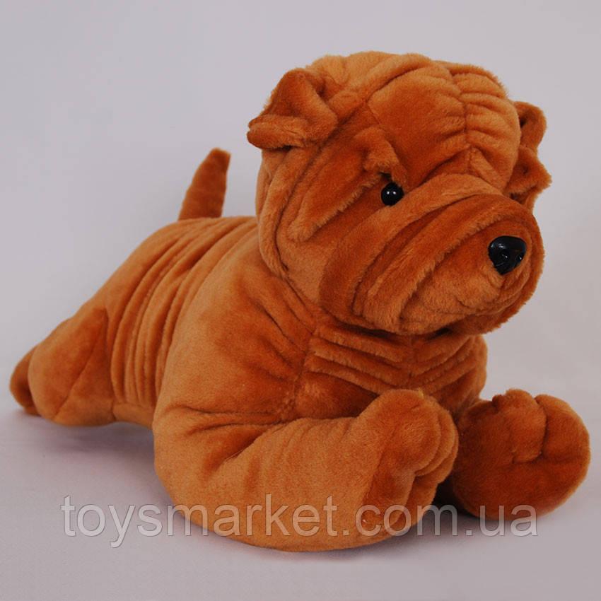 Мягкая игрушка пес Шарпей