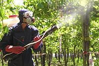 Выезд специалиста по защите растений