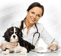 Ортопедические консультации и операции любой сложности