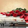 """Фото обои """"Красные розы"""""""