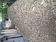Дробилка веток ВХ-62, фото 6