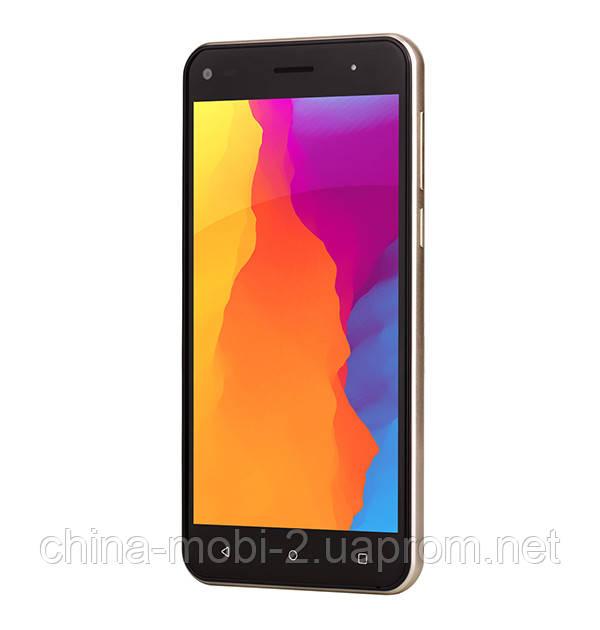 Смартфон Nomi i5030 EVO X 16GB Gold