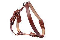 Шлея Collar двойная для средних собак