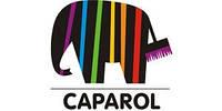 Утепление продукцией производителя « Caparol »