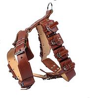 Шлея Collar с утяжелителями