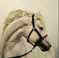 «Белая лошадь» картина маслом