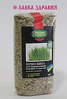 Зерно ржи для проращивания органическое, 400 г, Organic Country
