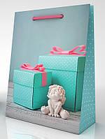 Пакет подарочный 20,5*15*7,5 см. , фото 1