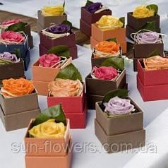 Мини-коробочка с розой
