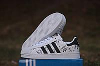 Кроссовки женские Adidas Superstar (бело-чёрные  + подпись)