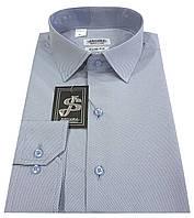 Мужская рубашка 10-12к. 7425/15-3912, фото 1
