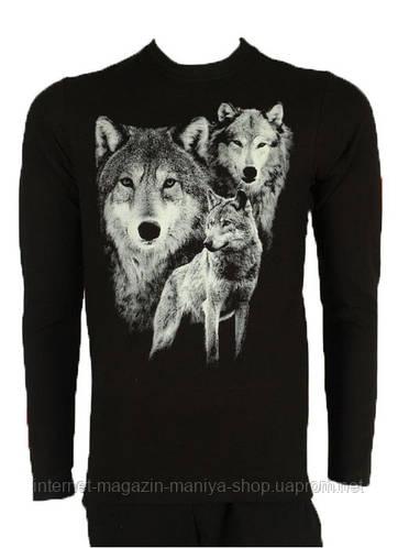 Реглан мужской волк