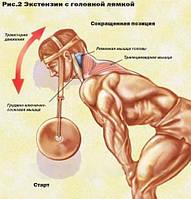 Тренажер для мышц шеи, фото 1