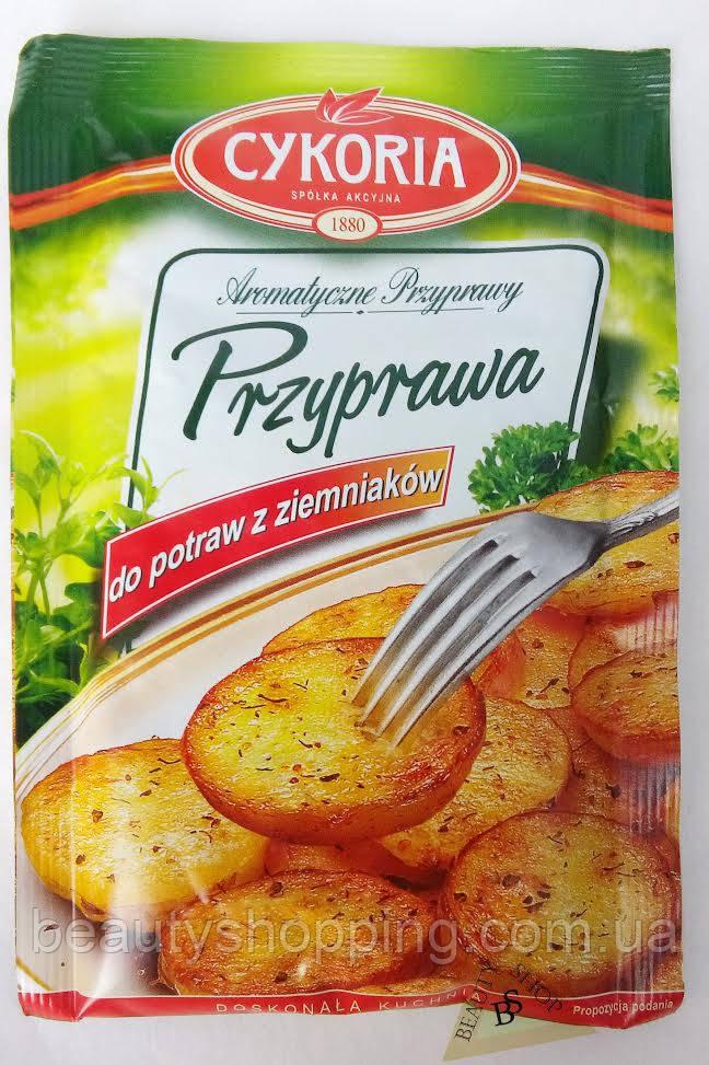 Вкусовая приправа из блюд для картофеля 30 г Cykoria Польша
