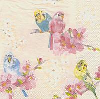 Салфетка для декупажа Волнистые попугайчики 6228