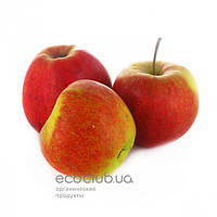 Яблоки горец 1кг