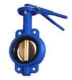 Регульована поворотна засувка Батерфляй з нержавіючим диском(EPDM) ДУ 65, фото 3