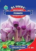 Семена Цикламен F1 Розмари персидский-мини