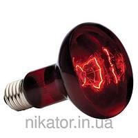 Лампы накаливания инфракрасные