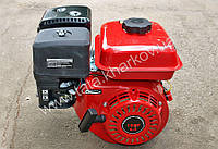 Двигатель ТАТА Витязь 168F - 6.5л.с под шпонку (диаметр коленвала 19мм) Q