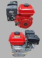 Двигатель ТАТА Витязь 168F - 6.5л.с под конус V