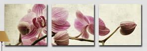 Картини за номерами 50х150 див. Триптих Сонячний день