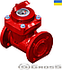 Счетчик Gross WPW-UA 65/200 Ду 65 горячей воды турбинный, фото 4