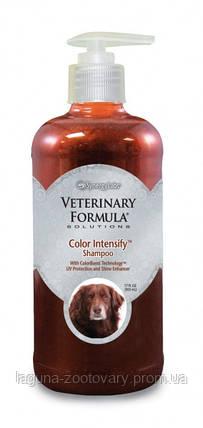 Veterinary Formula Color Intensify Shampoo ВЕТЕРИНАРНАЯ ФОРМУЛА ИНТЕНСИВНЫЙ ЦВЕТ шампунь для собак и кошек с шерстью золотистого, рыжего и коричневого, фото 2