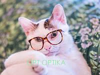 Неправильно подобранные очки могут испортить ваш образ!