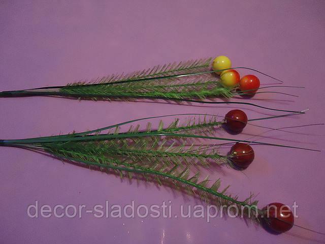 Ветка ягодки