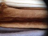 Шкури хутро норка кольору золото датська, самці 70-75 см, фото 2