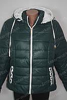 Демисезонная женская куртка батал на замке с капюшоном зеленая
