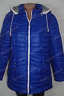 Демисезонная женская куртка батал на замке с капюшоном синяя