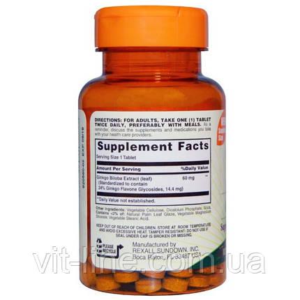 Sundown Naturals, Стандартизованный экстракт листьев гинко билоба, 60 мг, 100 таблеток, фото 2