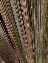 Шторы нити с люрексом радуга 20, фото 2