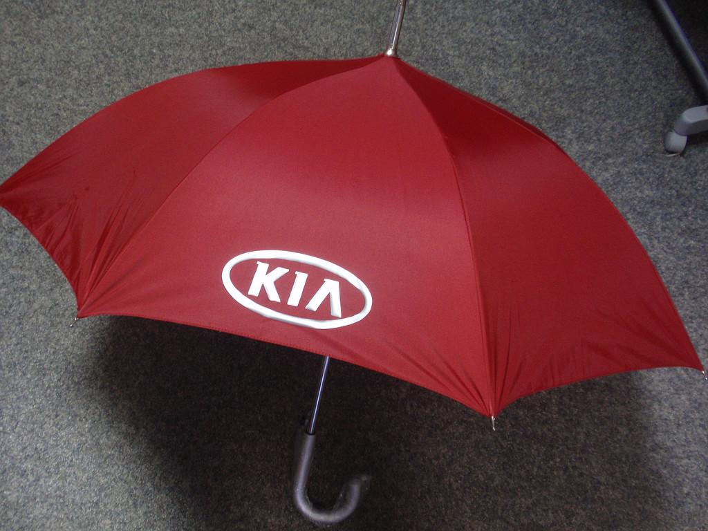 Зонты с печатью 2
