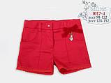 -Детская одежда ТМ МОНЕ, шорты для девочки р-р 116,122, фото 2
