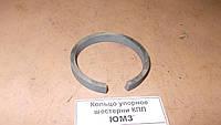 Кольцо подшипника упорное ЮМЗ 36-1701083