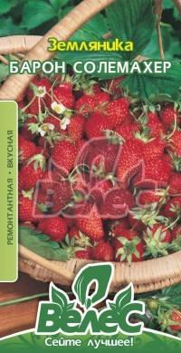 Семена земляники Барон Солемахер 0,1г ТМ ВЕЛЕС, фото 2