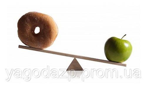 Правильный рацион питания сыроеда